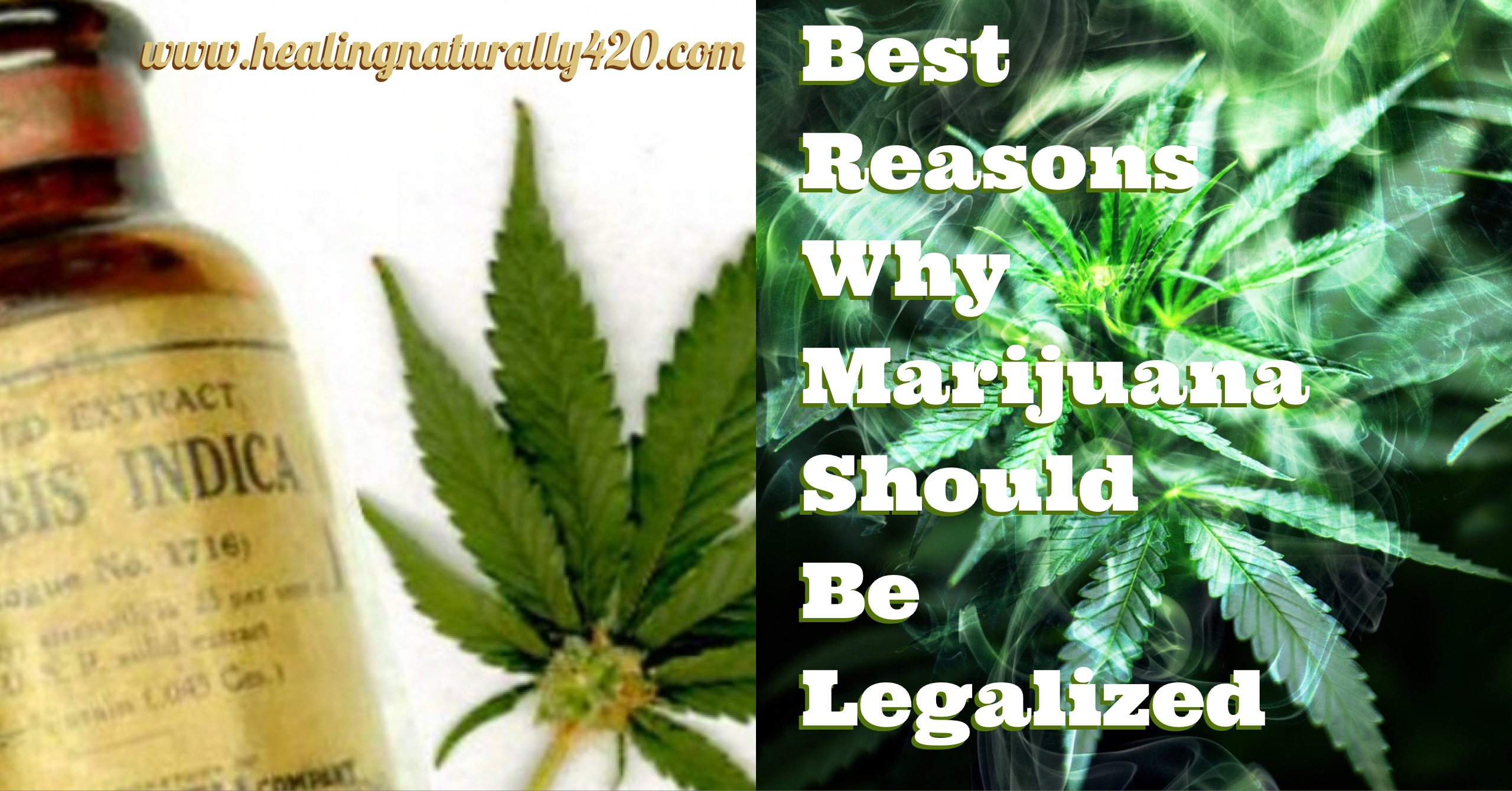 reasons why marijuana should be legalized The new york times made history this month by becoming the first major  national paper to call for the repeal of marijuana prohibition in an.