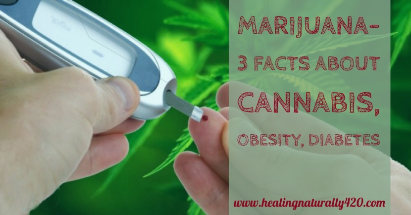 3 Facts About Cannabis, Obesity, and Diabetes