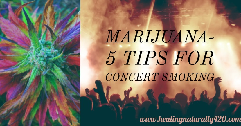 5 Concert Etiquette Tips for Cannabis Enthusiasts