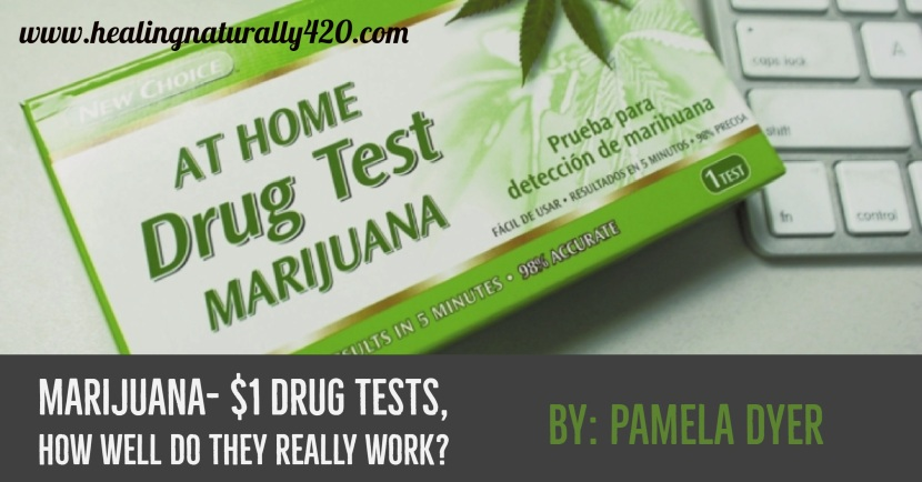 The Ultimate Dollar Store Deal: How Accurate Is a $1 Marijuana At-Home Drug Test? By: Pamela Dyer