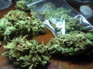 weed nugs