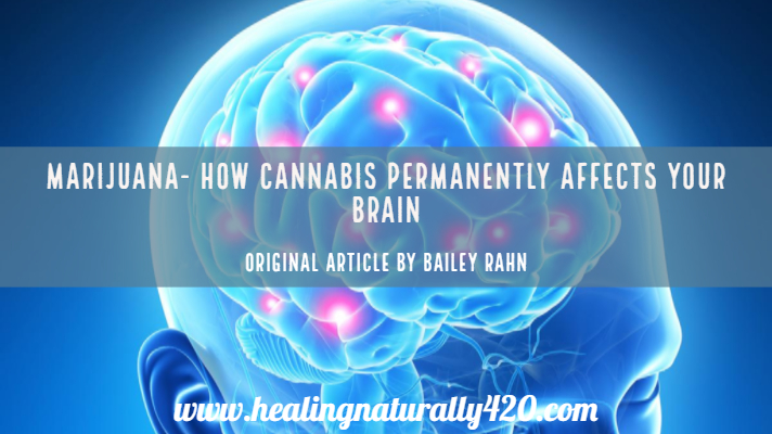 The Medical Minute: How Does Cannabis Permanently Impact the Brain?