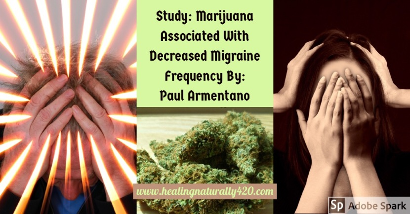 Study: Marijuana Associated With Decreased Migraine Frequency By: PaulArmentano