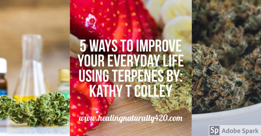 5 Ways To Improve Your Everyday Life Using Terpenes By: Kathy T Colley